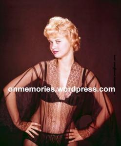 Gloria Dawn in Black Lace (1) by Ron Vogel