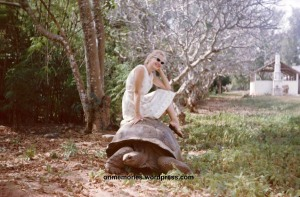 Shannon Moeser on Tortoise on Prison Island.  Photograph taken July 6, 1964.